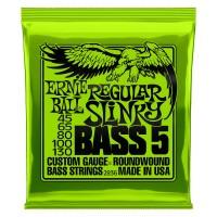 Ernie Ball BASS 5 Regular Slinky